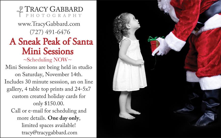 sneak peak of santa mini sessions