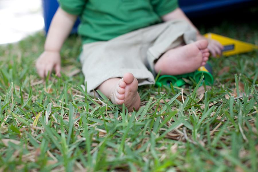 palm harbor baby photographer