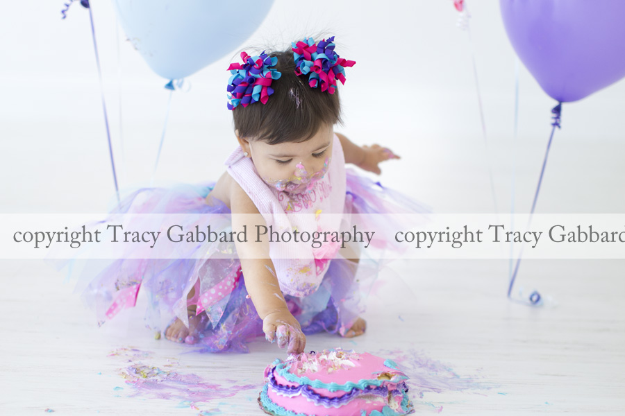 clearwater baby photographer